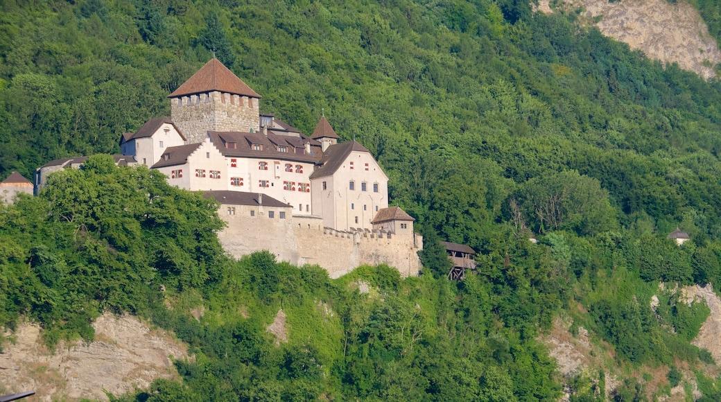 Vaduzin linna featuring linna, vuoret ja rauhalliset maisemat