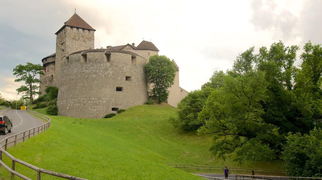 Vaduzin linna johon kuuluu vanha arkkitehtuuri, rauhalliset maisemat ja linna tai palatsi