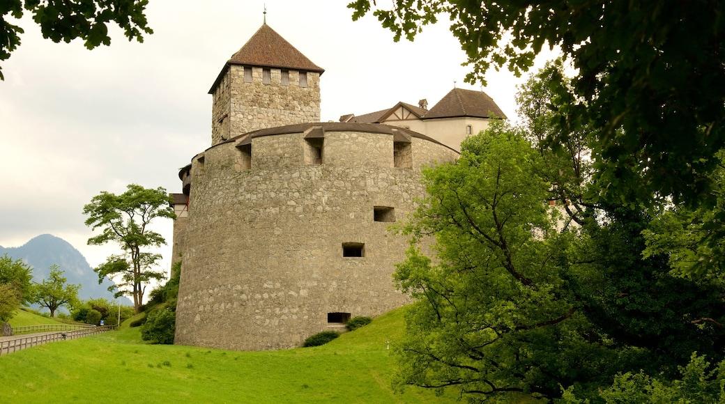 Vaduzin linna joka esittää linna tai palatsi, vanha arkkitehtuuri ja rauhalliset maisemat