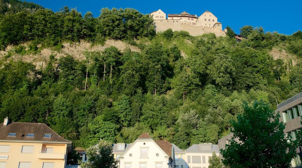 Vaduzin linna joka esittää linna tai palatsi, perintökohteet ja pieni kaupunki tai kylä
