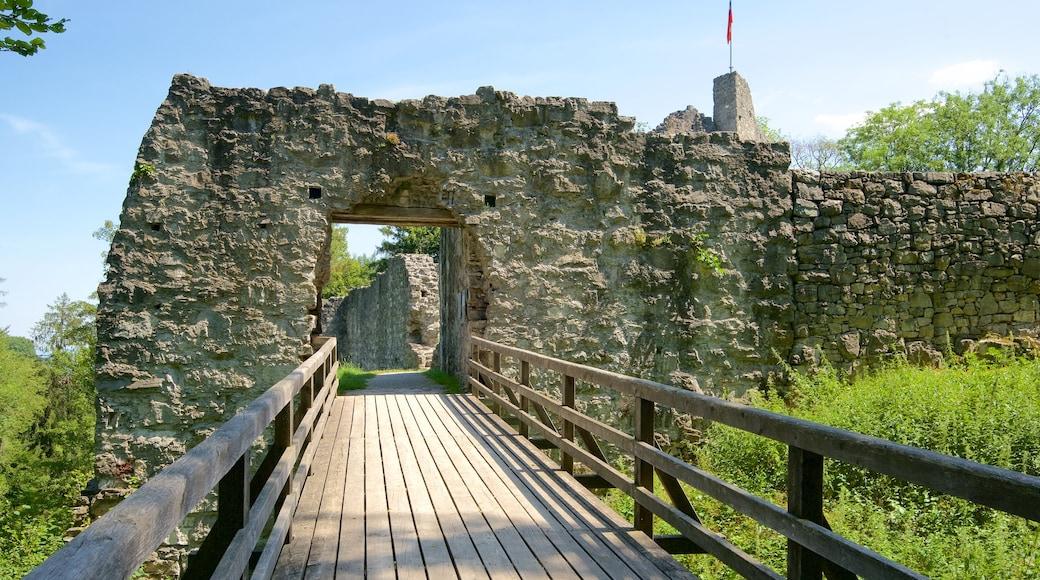 Liechtenstein featuring heritage elements, a bridge and building ruins