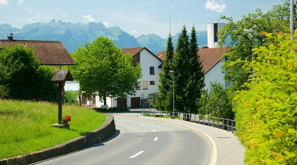 Liechtenstein showing street scenes and a small town or village