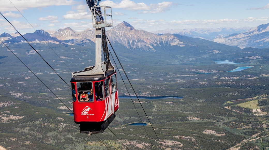 Jasper Tramway which includes a gondola, tranquil scenes and landscape views