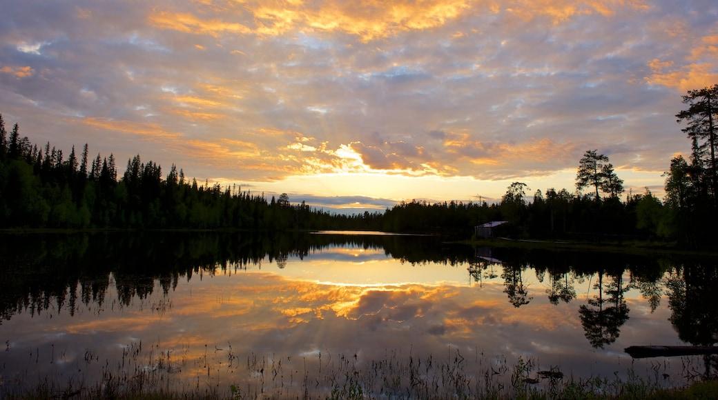 Luosto johon kuuluu rauhalliset maisemat, auringonlasku ja joki tai puro