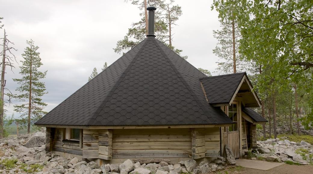 Pyhätunturi featuring rauhalliset maisemat ja talo