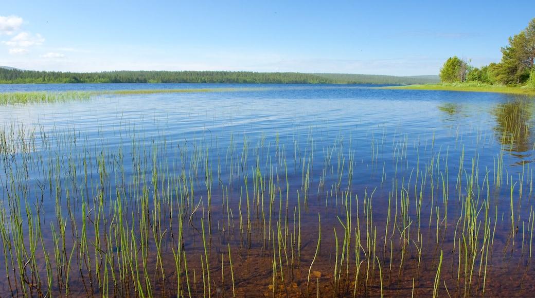 Enontekio joka esittää maisemat, suo ja joki tai puro