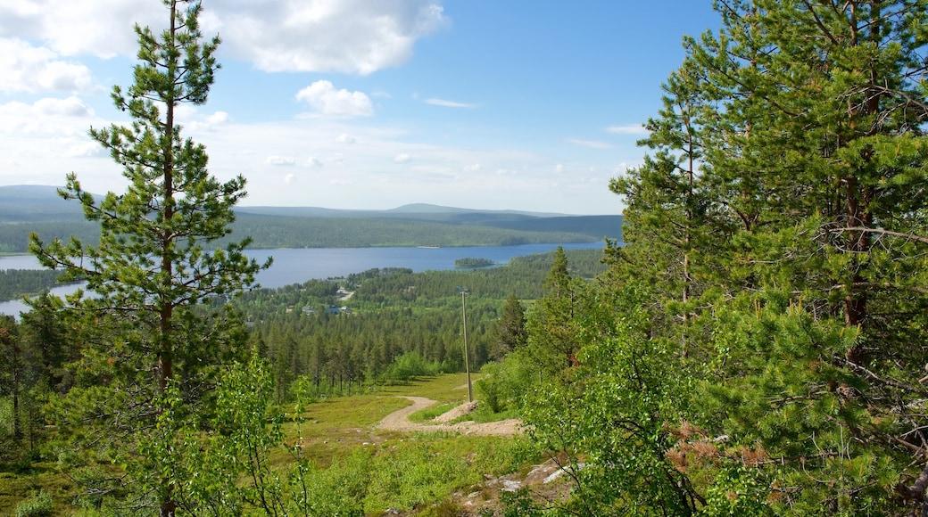 Enontekio johon kuuluu maisemat, joki tai puro ja metsät