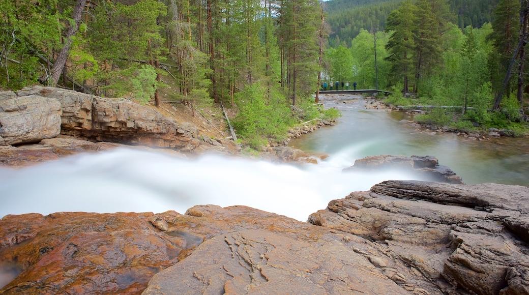 Lemmenjoen kansallispuisto johon kuuluu rauhalliset maisemat, koski ja joki tai puro