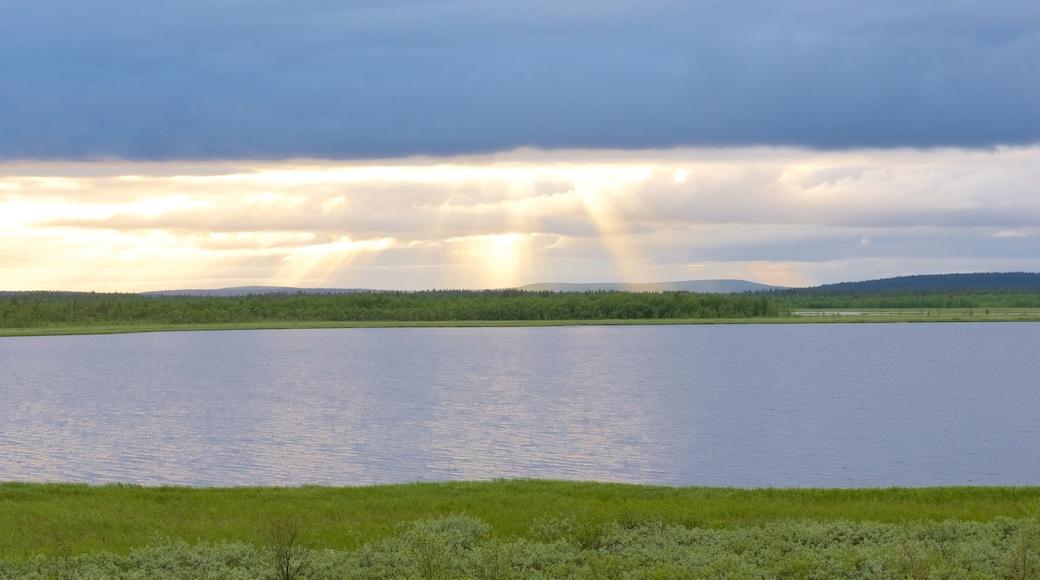 Sotkajärven lintutorni joka esittää rauhalliset maisemat, maisemat ja joki tai puro
