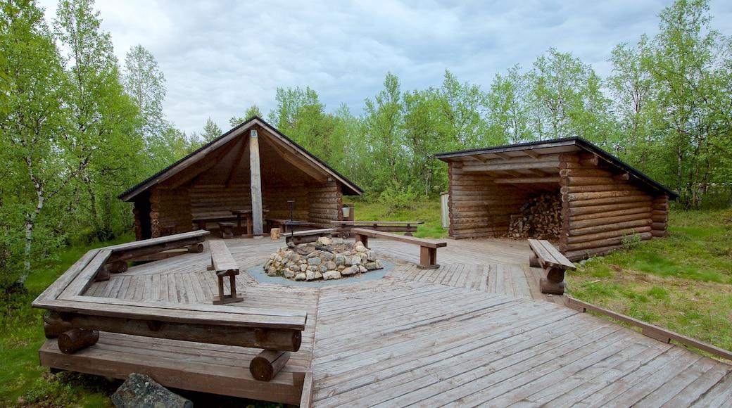 Sotkajärven lintutorni featuring rauhalliset maisemat
