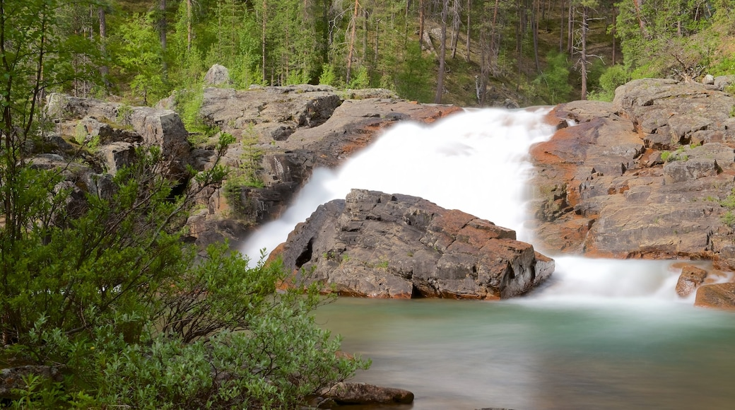 Lemmenjoen kansallispuisto joka esittää metsänäkymät, rauhalliset maisemat ja koski