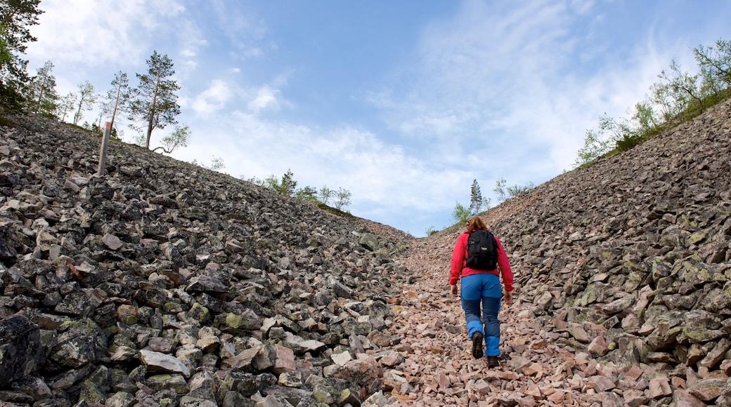 Pallas-Yllästunturin kansallispuisto johon kuuluu vuoret ja patikointi tai kävely sekä yksi nainen