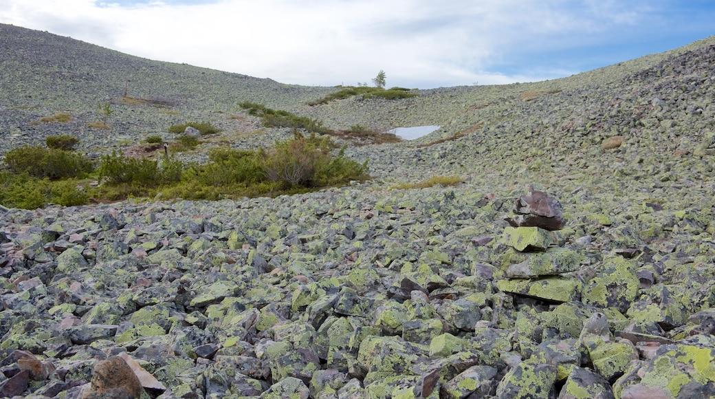 Pallas-Yllästunturin kansallispuisto featuring rauhalliset maisemat ja vuoret
