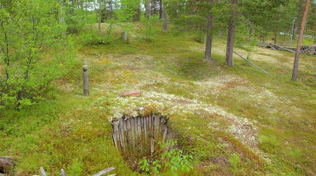 Tunturi-Lapin luontokeskus featuring puutarha ja rauhalliset maisemat