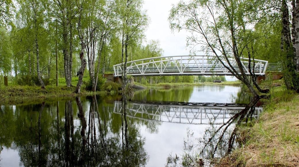Puisto featuring metsät, silta ja joki tai puro