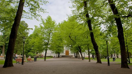 Old Church of Helsinki which includes a park