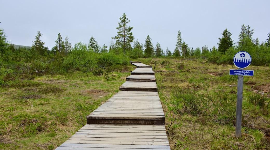 Urho Kekkosen kansallispuisto johon kuuluu kyltit, silta ja rauhalliset maisemat