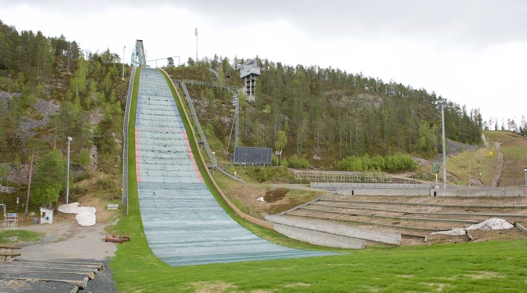 Rukan hyppyrimäet joka esittää hiihto