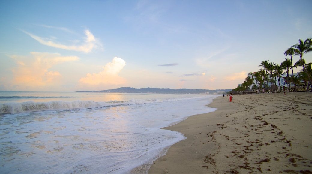 Nuevo Vallarta Beach which includes a sandy beach, tropical scenes and landscape views