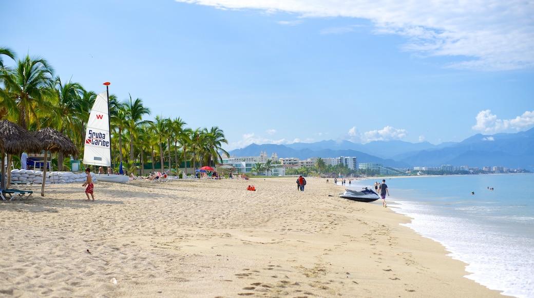 Nuevo Vallarta Beach showing tropical scenes and a sandy beach