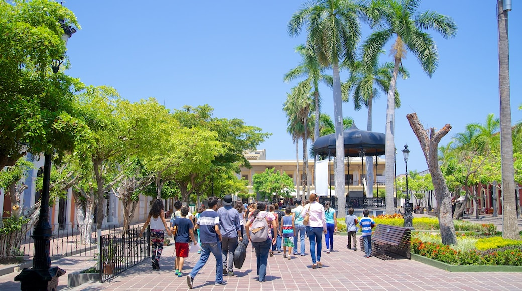 Plaza Machado which includes a square or plaza and a park as well as a large group of people