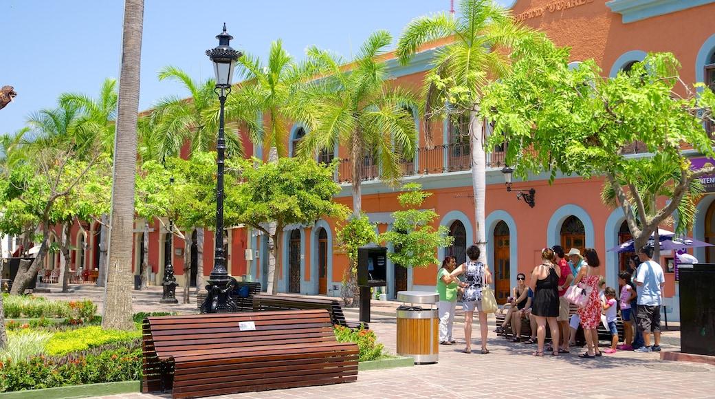 Plaza Machado mostrando un parque y un parque o plaza y también un pequeño grupo de personas