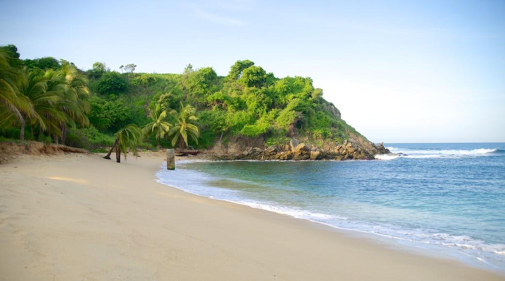 Playa Bacocho mostrando una playa, costa rocosa y vistas de paisajes