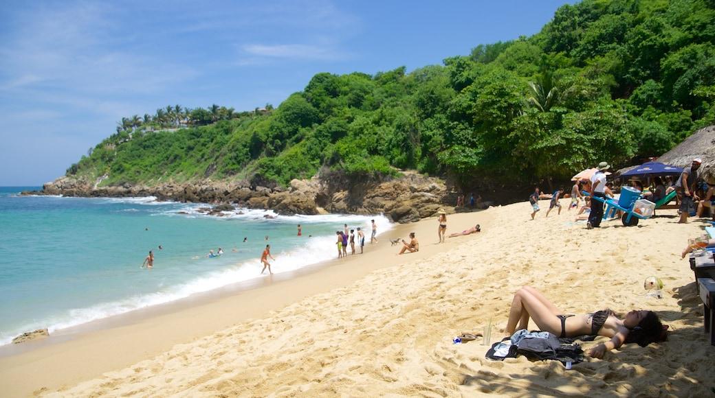Carrizalillo Beach which includes swimming, a beach and rugged coastline
