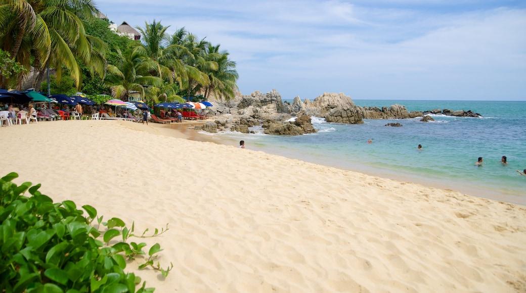 Puerto Escondido which includes a beach, rocky coastline and tropical scenes