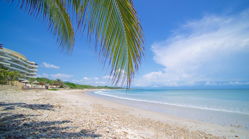 Punta Mita showing a sandy beach and landscape views