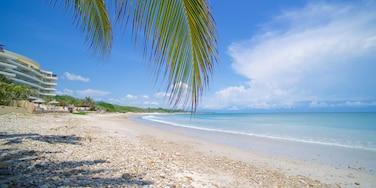 Punta Mita ofreciendo vistas de paisajes y una playa