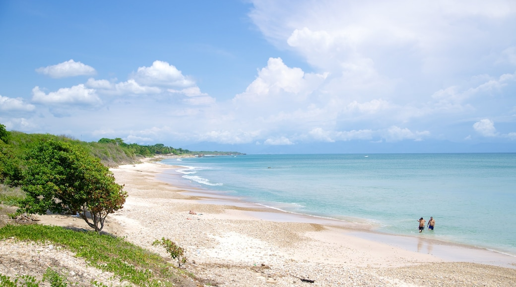 Punta Mita showing landscape views and a beach