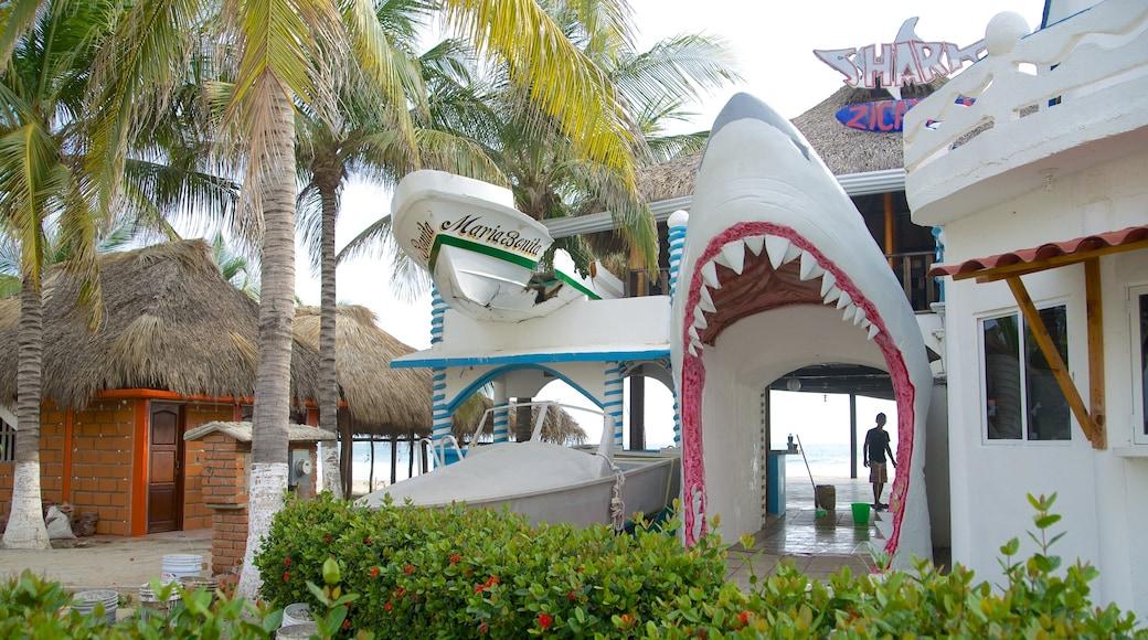 Zicatela Beach which includes general coastal views and a beach bar
