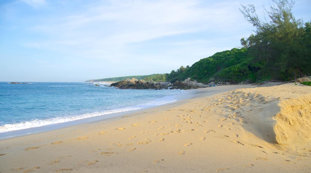 Playa Bacocho mostrando costa escarpada y una playa