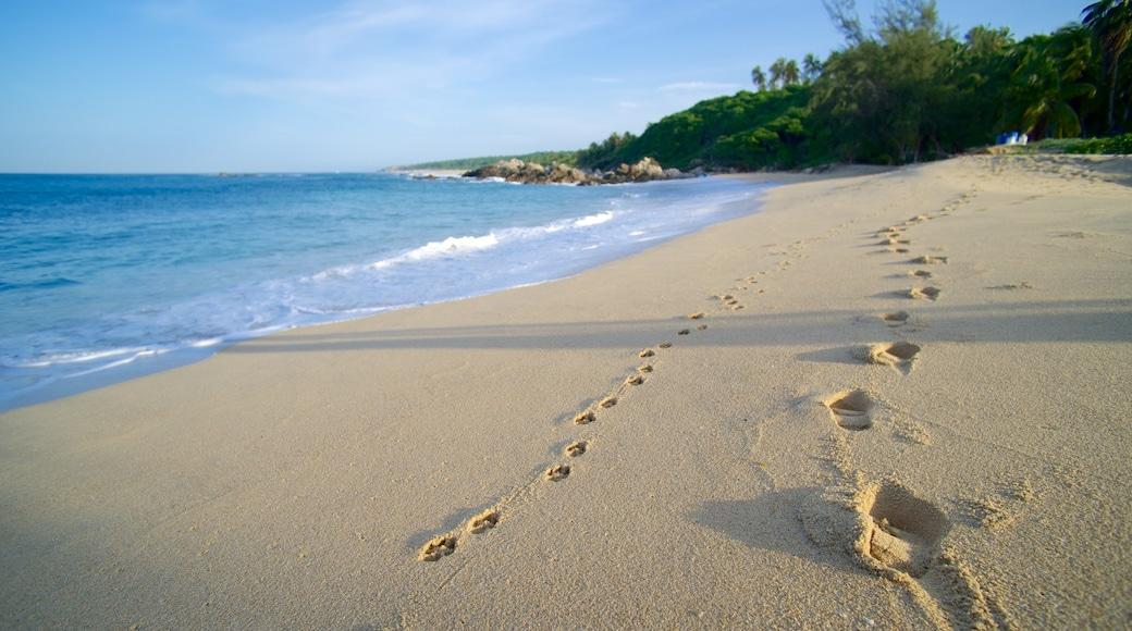 Playa Bacocho que incluye una playa