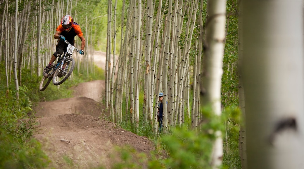 Aspen Highlands which includes mountain biking as well as an individual male
