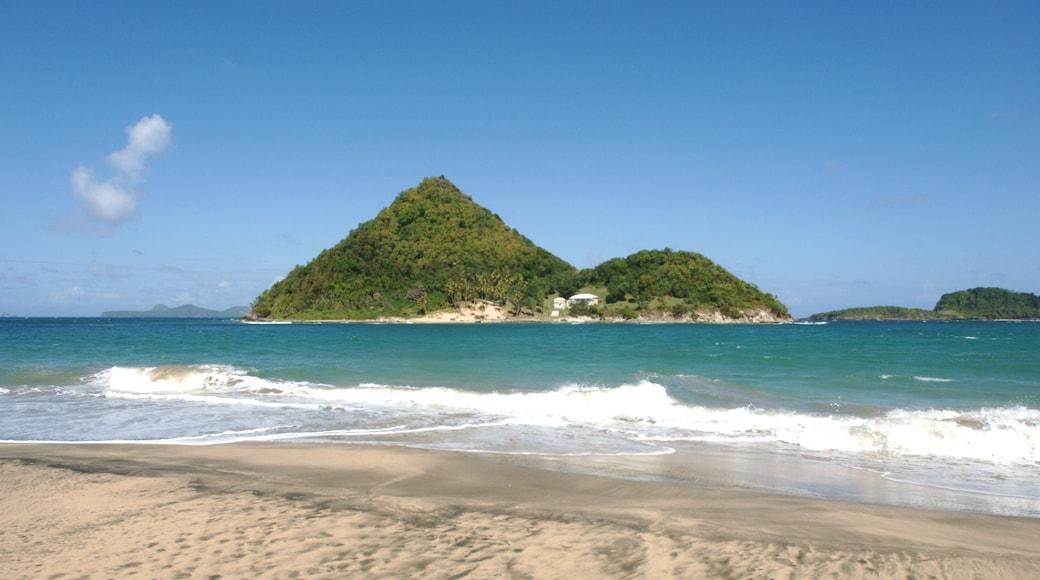 Granada que incluye una playa de arena y imágenes de una isla