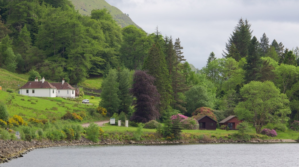 Fort William featuring a house and a lake or waterhole