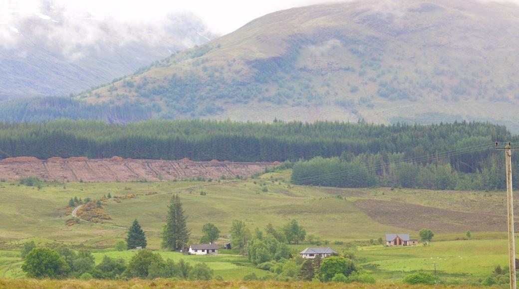 Ben Nevis das einen ruhige Szenerie und Landschaften