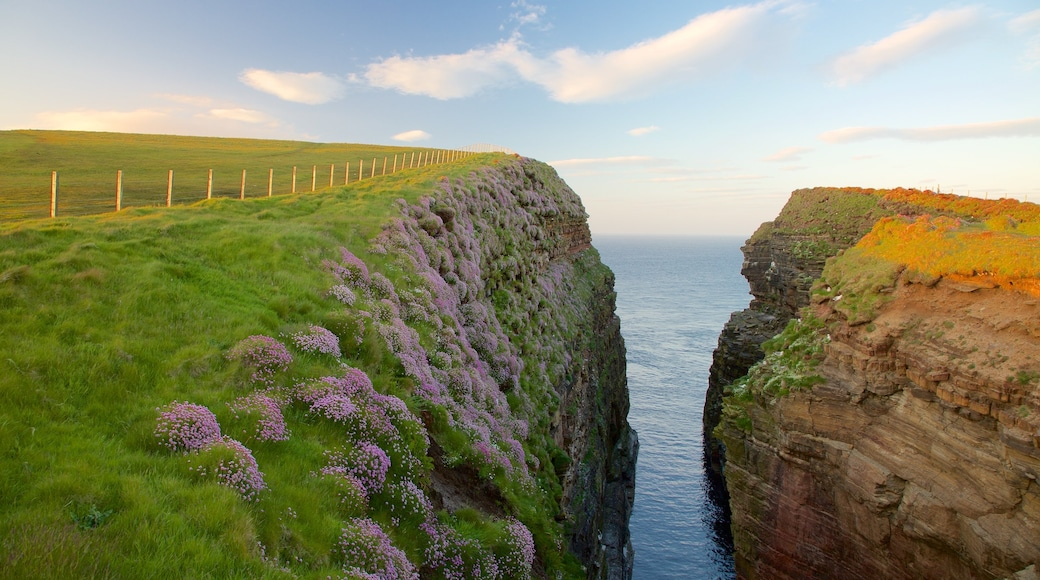 Duncansby Head which includes general coastal views, tranquil scenes and rugged coastline