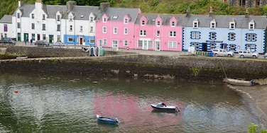 Portree Harbour featuring a coastal town and a bay or harbour