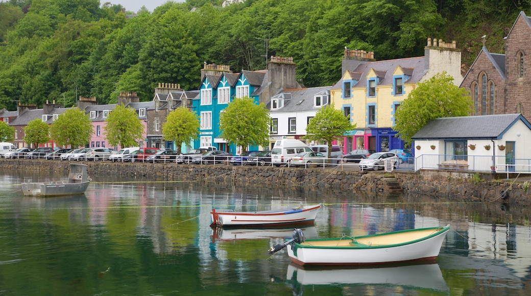 Isle of Mull showing a bay or harbour and a coastal town