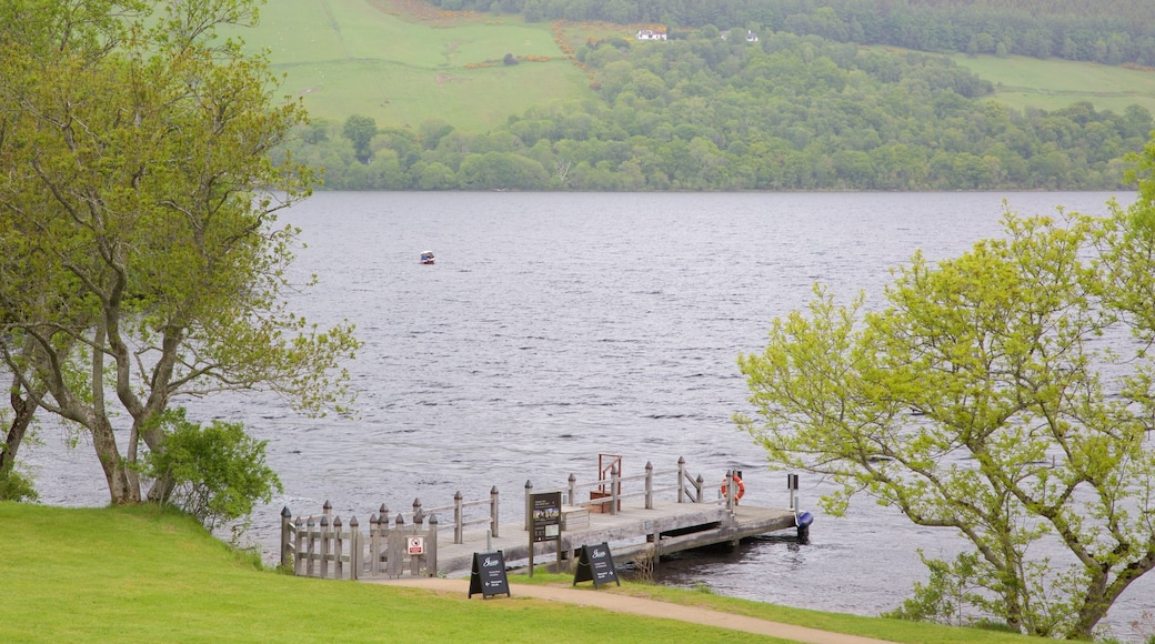Loch Ness showing general coastal views, a marina and tranquil scenes