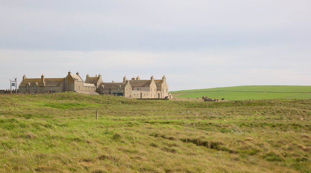 Skara Brae showing a small town or village, heritage architecture and heritage elements