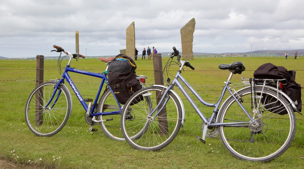 Standing Stones of Stenness which includes tranquil scenes, a monument and heritage elements