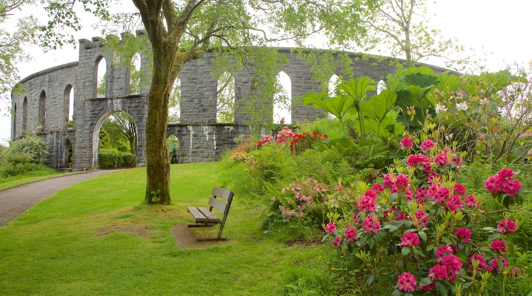 McCaig\'s Tower featuring heritage elements, heritage architecture and a garden