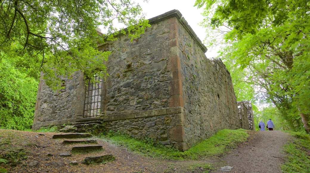 Dunstaffnage Castle and Chapel showing a castle, heritage architecture and heritage elements