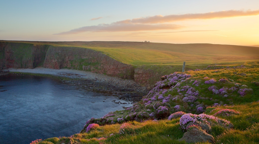 Duncansby Head featuring rugged coastline and tranquil scenes