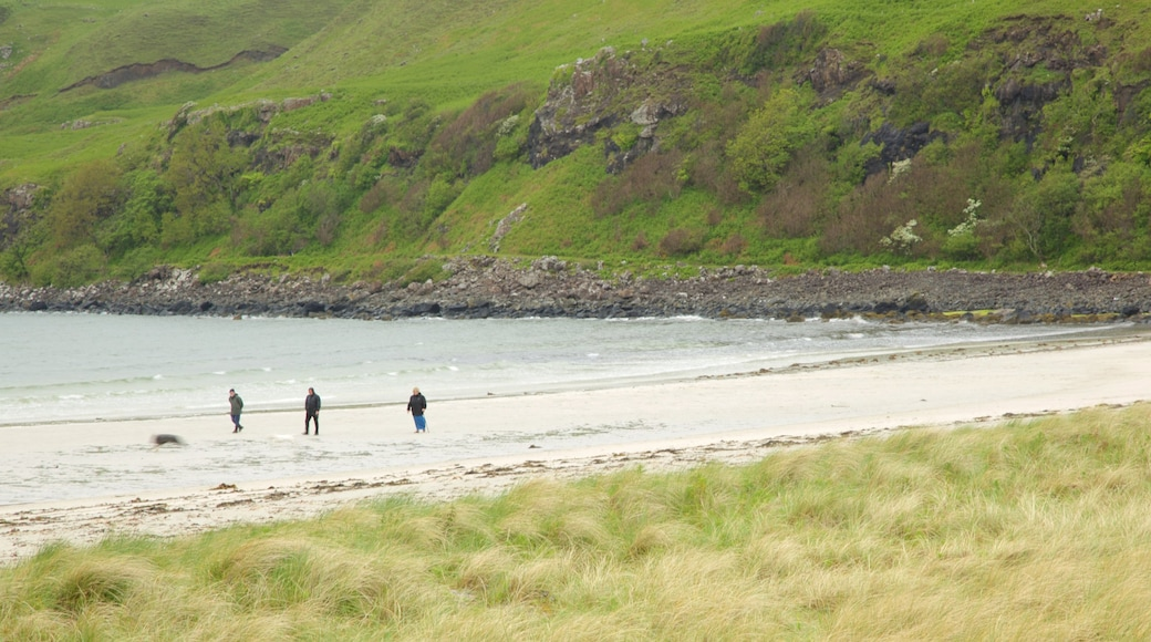 Calgary Bay Beach which includes general coastal views, tranquil scenes and a sandy beach