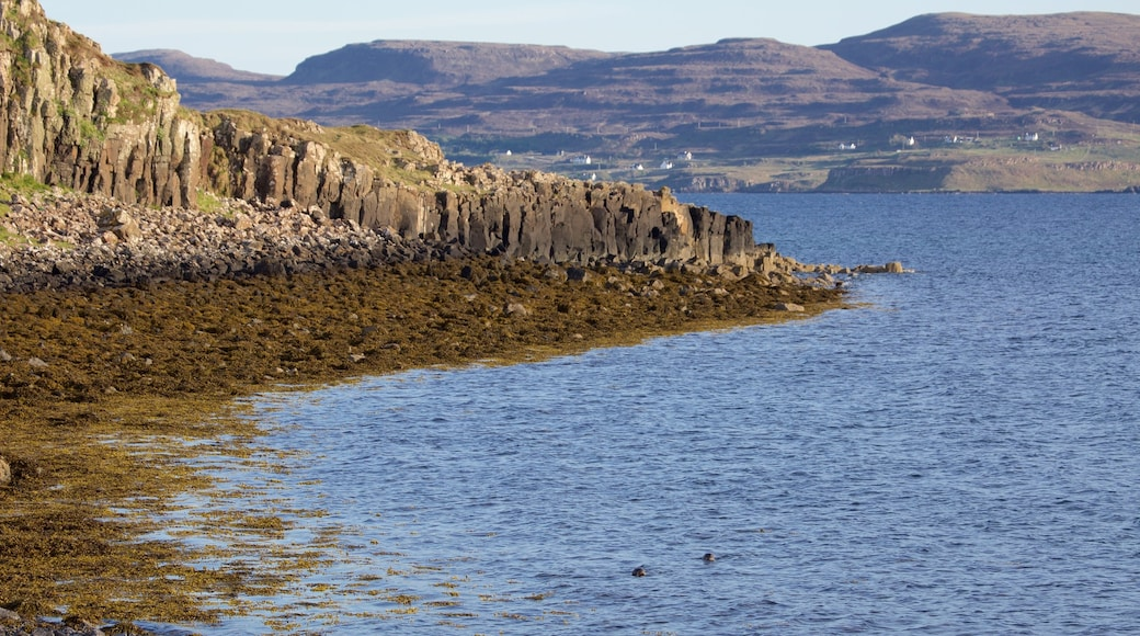 Isle of Skye featuring mountains and rocky coastline